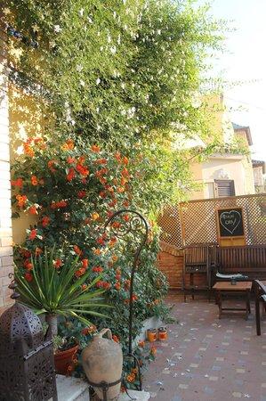 Villa Alicia Guest House: Villa Alicia - interni della struttura
