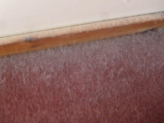 Isles of Glencoe Hotel & Leisure Centre: Dust mites behind your bed-scary!