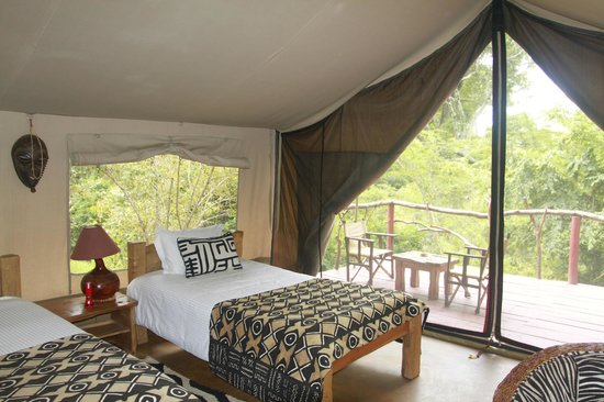 Olumara Camp: beds in tent -  very comfortable