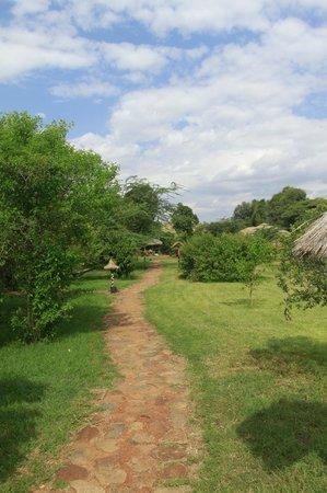 Olumara Camp: beautiful grounds