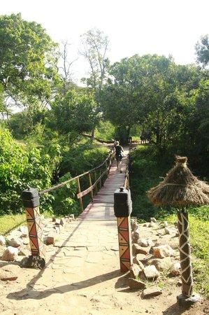 Olumara Camp: bridge to the camp
