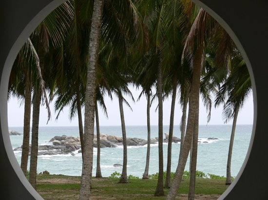 Turtle Bay: view from window