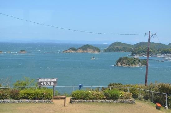 Dolphin Island: VISTA LINDA DO ALTO DA TORRE