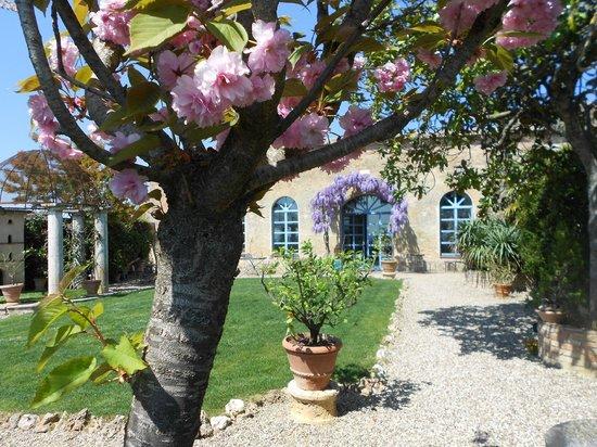 Frances' Lodge Relais: Giardino in fiore
