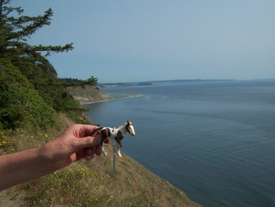 Fort Ebey: coastal beauty and geocaching too