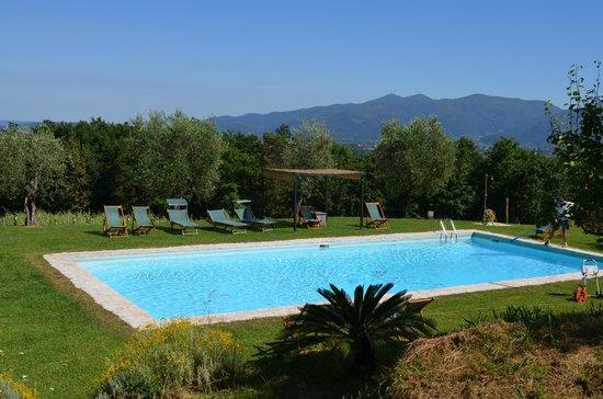 Hotel Fabbrica di San Martino : The pool area.