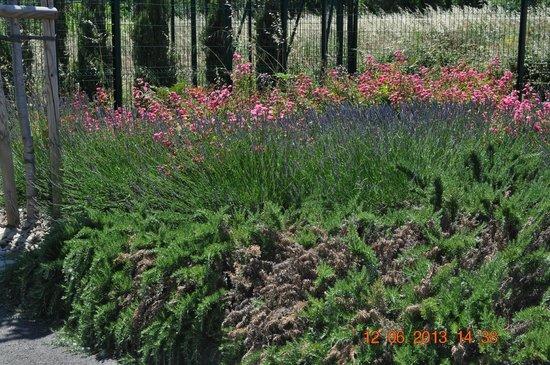 Ibis Istres Trigance: La nature
