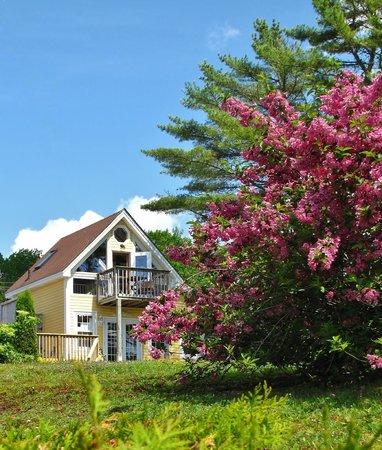 Larinda's Landing Oceanfront Cottages: Crow's Nest Cottage
