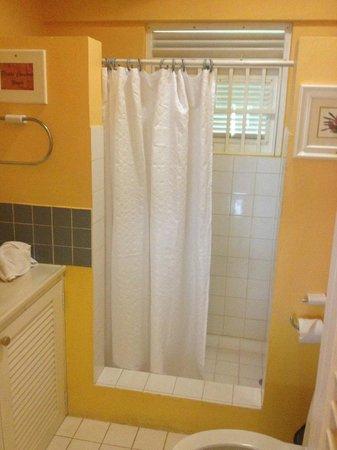 Sugarapple Inn : shower
