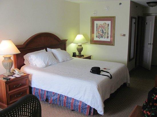 Hilton Garden Inn Cleveland Downtown: King Sized Bed