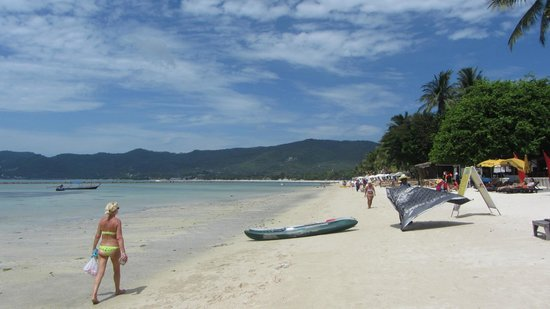Dara Samui Beach Resort: the beach near the hotel