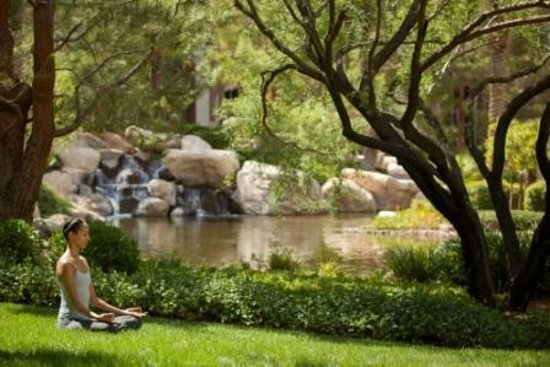 JW Marriott Las Vegas Resort - Spa Aquae : As weather permits, our yoga instructors take classes outside to our lush grounds.