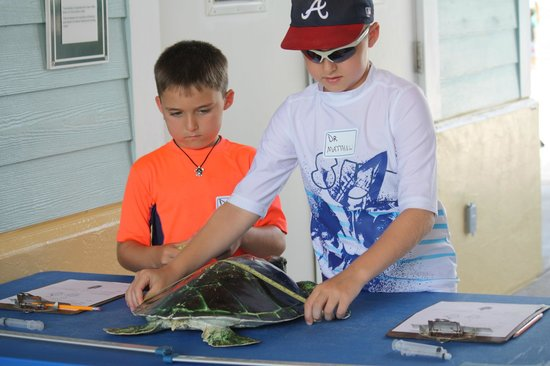 Loggerhead Marinelife Center: Our boys being Jr. Vets.