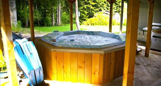 Nimpkish Forest B&B : Your Bed and Breakfast Hottub