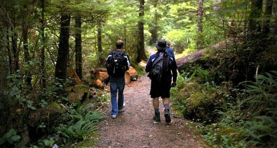 Nimpkish Forest B&B : Beautiful Nature Hikes