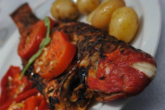 Bar Caloura: Delicious Parrot Fish