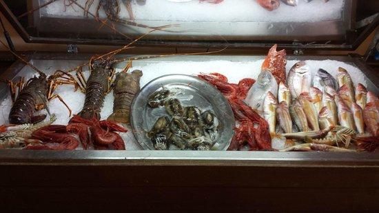 Ristorante Sirena di Sansica : Alcune delle prelibatezze. Immancabile l'aragosta sempre viva.