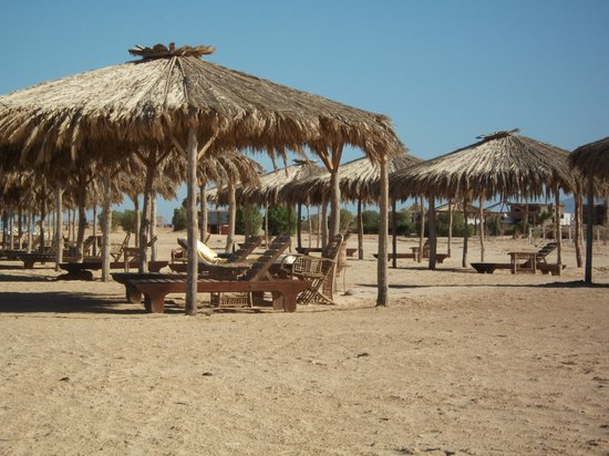 Swisscare Nuweiba Resort Hotel: Plenty of sun shades on the long beach
