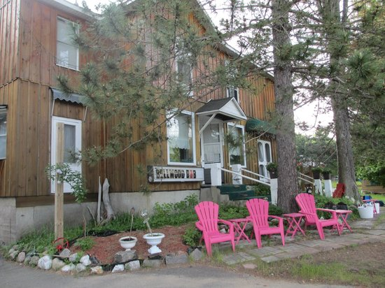 Bellwood Inn Bed & Breakfast: Delights of the sun loungers!