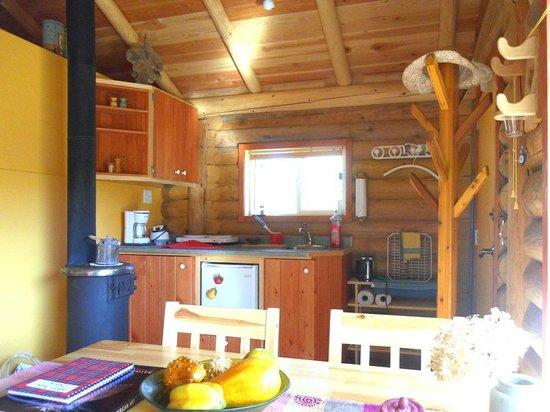 Bieri's Paradise Guest Farm : log cabin kitchenette