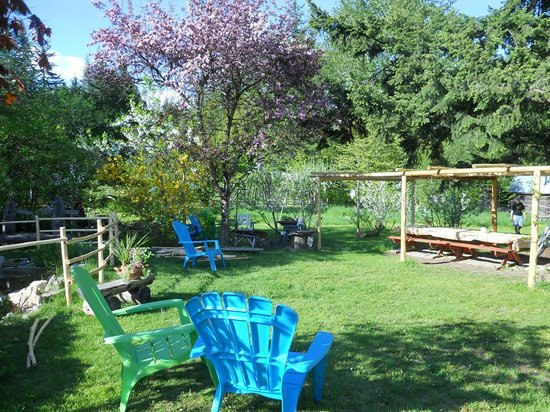 Bieri's Paradise Guest Farm: park like backyard