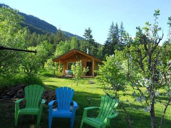 Bieri's Paradise Guest Farm: firepit & logcabin
