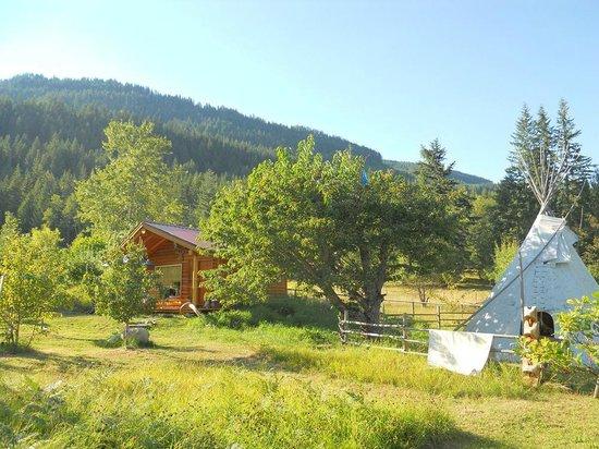 Bieri's Paradise Guest Farm: Tipi & log cabin