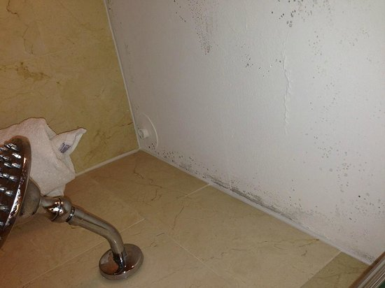 The San Luis Resort: BLACK MOLD BATHROOM