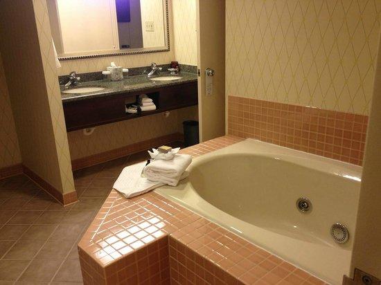 Minneapolis Marriott Southwest: Jacuzzi