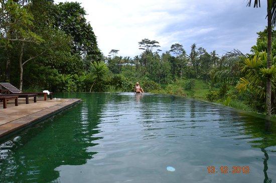 Komaneka at Tanggayuda: Swimming pool
