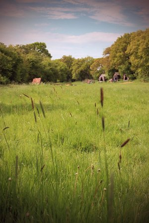 Malting Farm: Tents