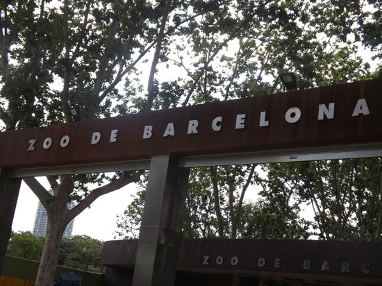 chic&basic Zoo Hotel: The nearby Barcelona Zoo, a Great Outing!