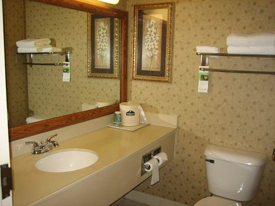Wingate by Wyndham Mechanicsburg/Harrisburg West: Basic bathroom but clean and spacious