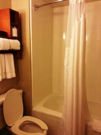 Holiday Inn Express Hampton Coliseum Central : The Bathroom