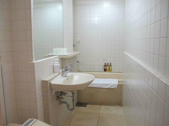 Hotel Mystays Nishi Shinjuku: 細長いバスルーム