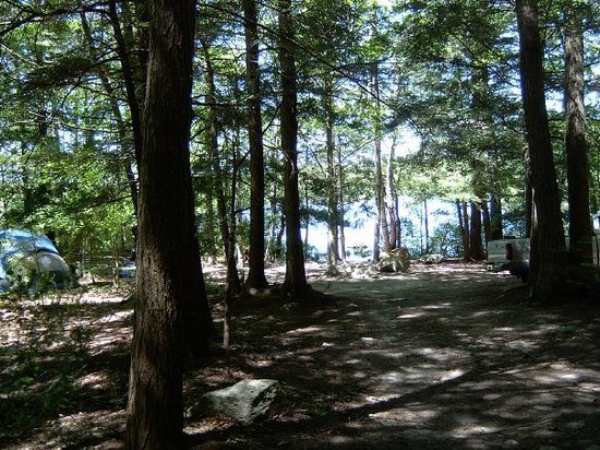 Woodmore Campground: Area of our Rustic Tent Sites W1 & W2