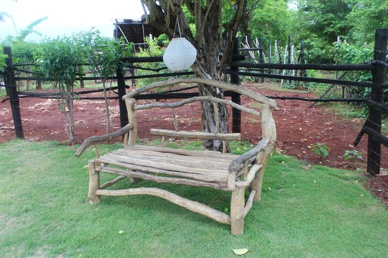 La Loma-Cita: A bench by the horses in the yard