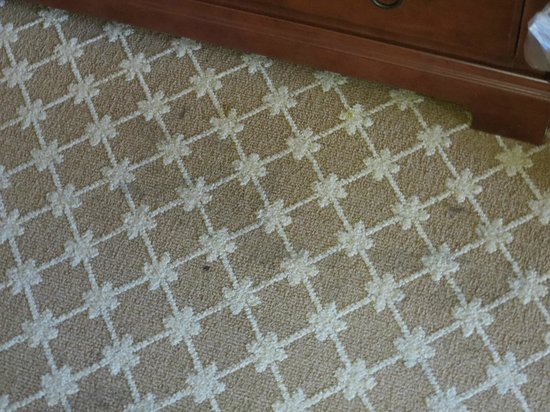 Country Inn & Suites By Carlson, Tifton: Carpet stains