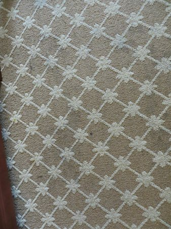 Country Inn & Suites by Radisson, Tifton, GA: More carpet stains