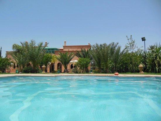 Villa Dar Mya Palmiers : Vue prise de la piscine
