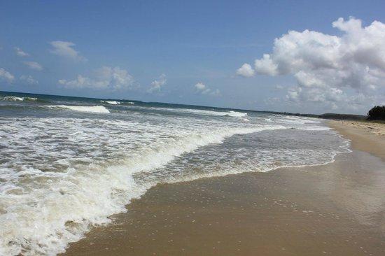 Avisa Nila Beach Resort: beach of tarkarli beach