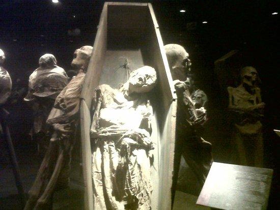 Museo de las Momias: Momia en el ataúd donde fue enterrada.