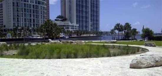 The Miami Circle: The circle is well marked with modern limestone. The actual ancient foundation for a Tequesta In