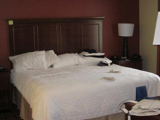 Hampton Inn & Suites Selma-San Antonio-Randolph AFB: BIG Comfy bed :)