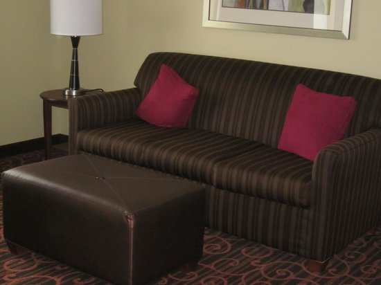 Hampton Inn & Suites Selma-San Antonio-Randolph AFB: sleeper sofa