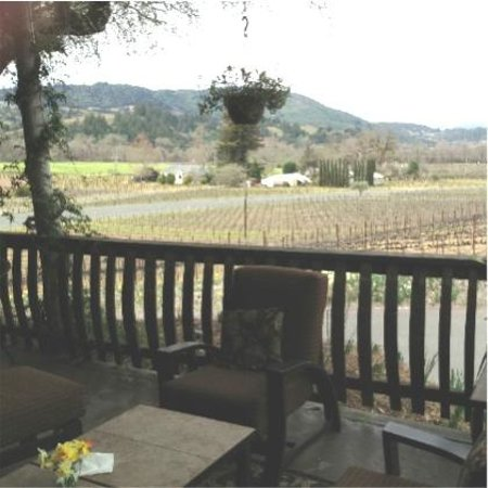 Papapietro Perry Winery: View from the patio