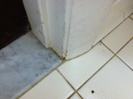 Quality Inn: bathroom floor