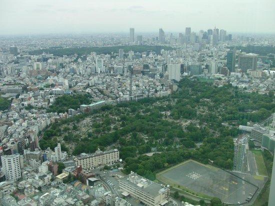 ゲートブリッジ - Picture of Tokyo City View Observation Deck (Roppongihills), Minato...