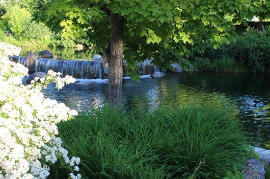 Hotel Le Bonne Entente: Front Gardens