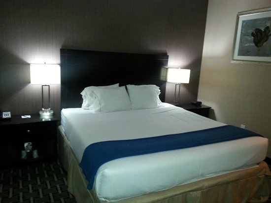 Holiday Inn Express Hotel & Suites West Coxsackie: Chambre 1 lit king
